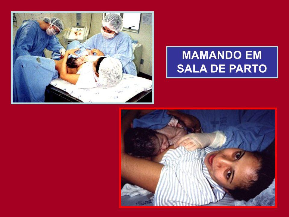 MAMANDO EM SALA DE PARTO