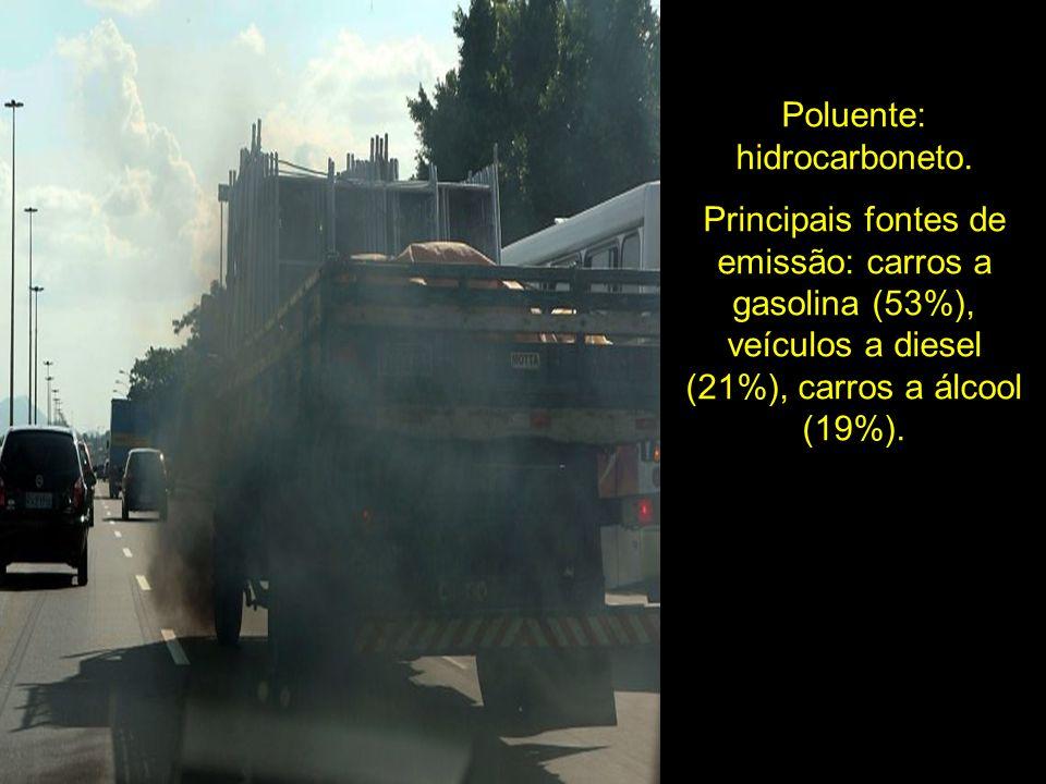 Poluente: hidrocarboneto. Principais fontes de emissão: carros a gasolina (53%), veículos a diesel (21%), carros a álcool (19%).