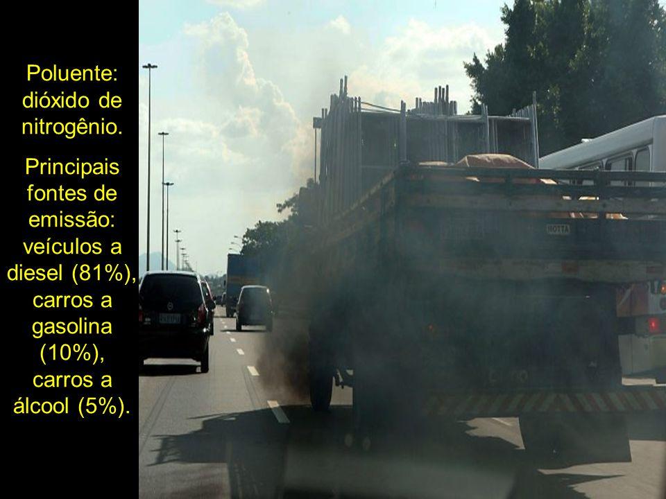 Poluente: dióxido de nitrogênio. Principais fontes de emissão: veículos a diesel (81%), carros a gasolina (10%), carros a álcool (5%).