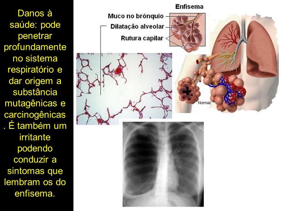 Danos à saúde: pode penetrar profundamente no sistema respiratório e dar origem a substância mutagênicas e carcinogênicas. É também um irritante poden