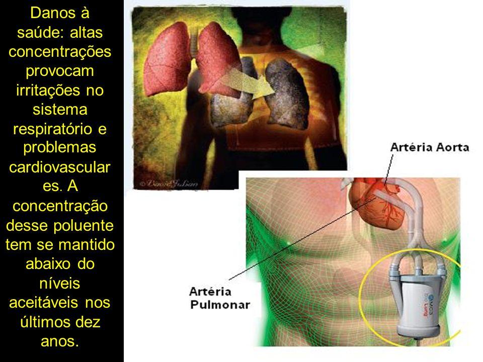 Danos à saúde: altas concentrações provocam irritações no sistema respiratório e problemas cardiovascular es. A concentração desse poluente tem se man