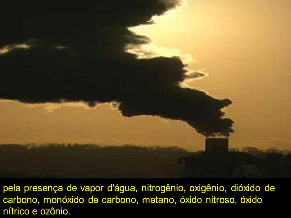 pela presença de vapor d'água, nitrogênio, oxigênio, dióxido de carbono, monóxido de carbono, metano, óxido nitroso, óxido nítrico e ozônio.