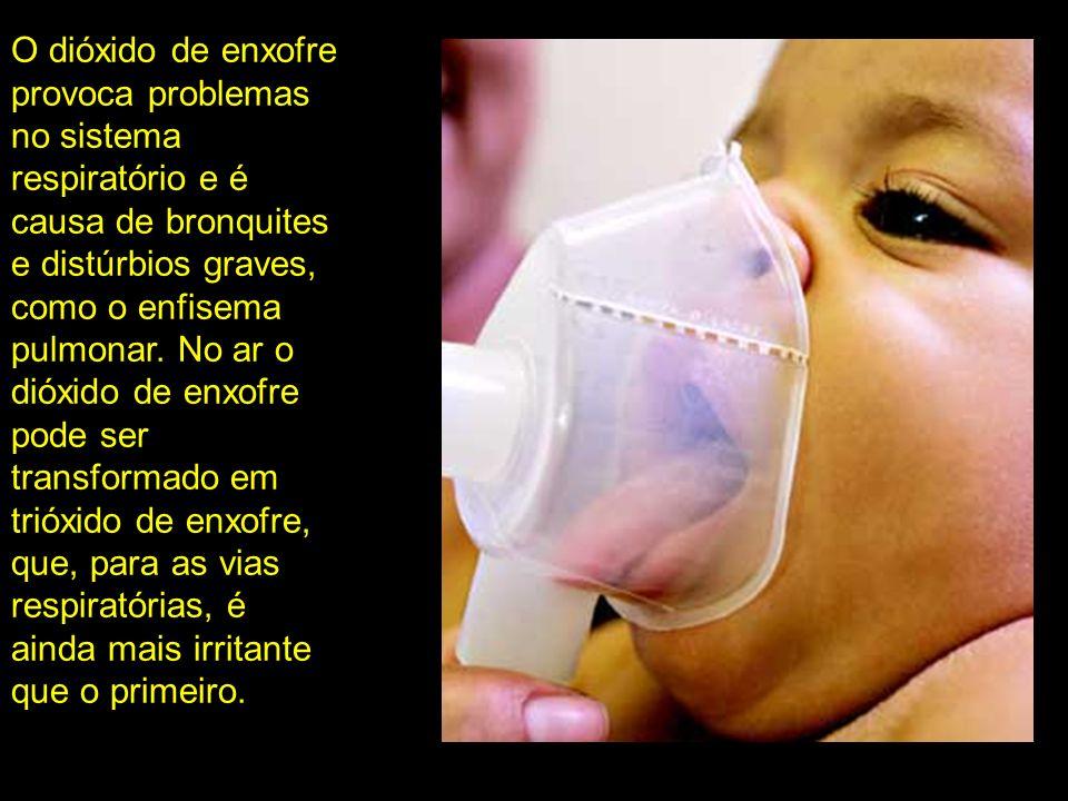 O dióxido de enxofre provoca problemas no sistema respiratório e é causa de bronquites e distúrbios graves, como o enfisema pulmonar. No ar o dióxido