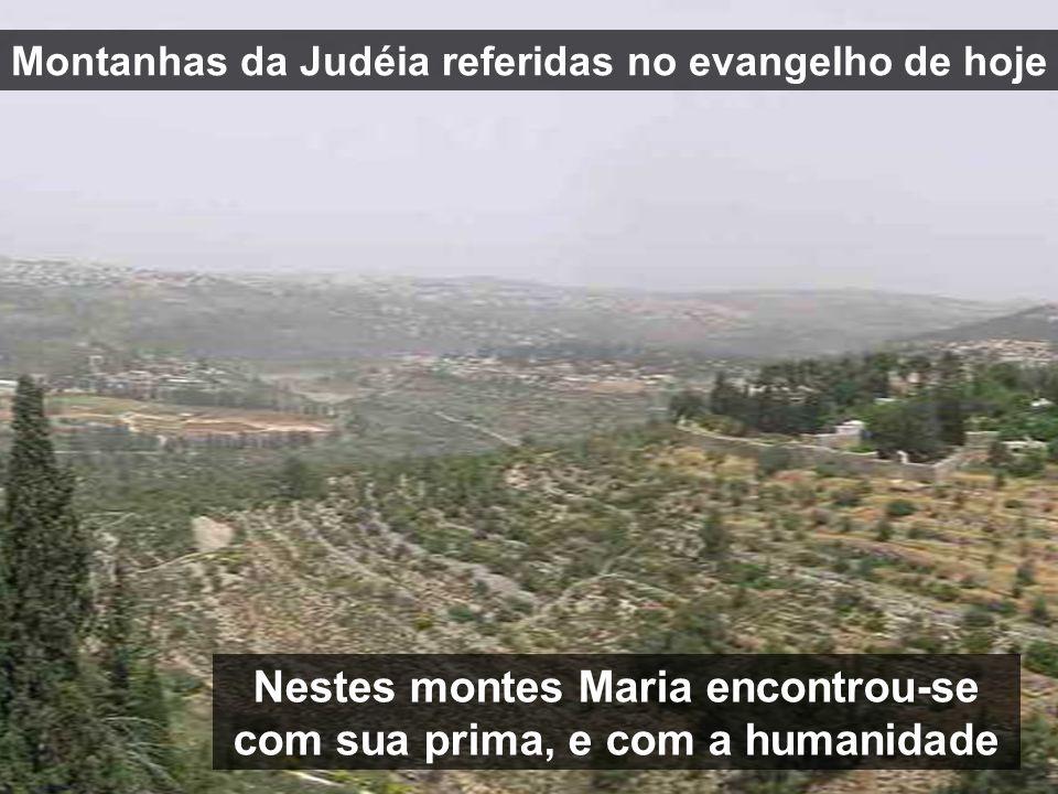 Nestes montes Maria encontrou-se com sua prima, e com a humanidade Montanhas da Judéia referidas no evangelho de hoje