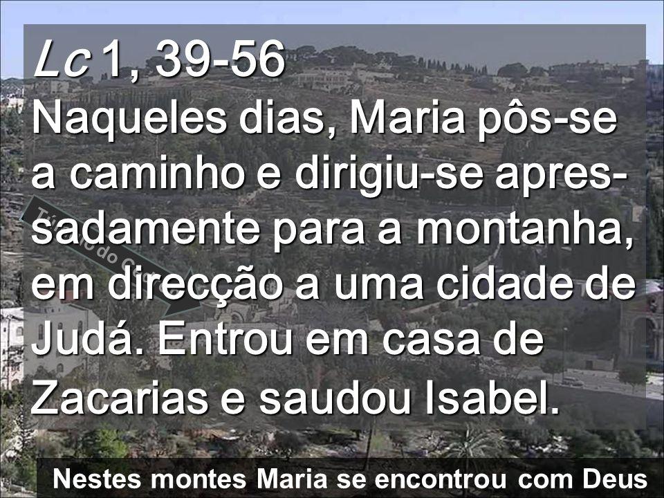 Nestes montes Maria se encontrou com Deus Túmulo do Cedron Lc 1, 39-56 Naqueles dias, Maria pôs-se a caminho e dirigiu-se apres- sadamente para a montanha, em direcção a uma cidade de Judá.