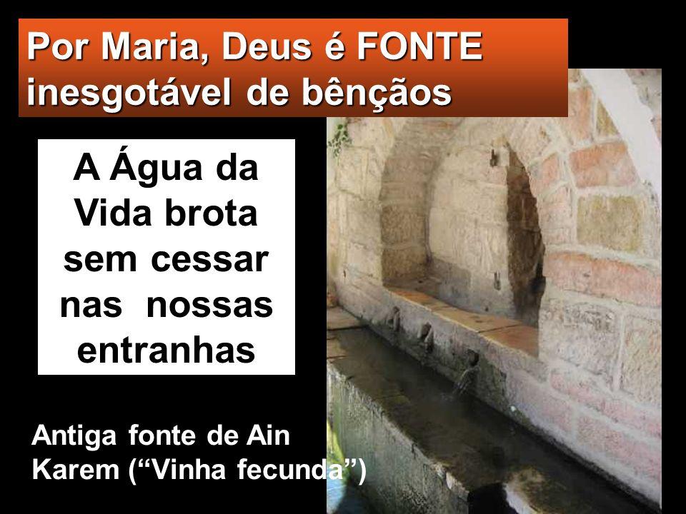 Isabel ficou cheia do Espírito Santo e ex- clamou em alta voz: «Bendita és tu entre as mulheres e bendito é o fruto do teu ventre.