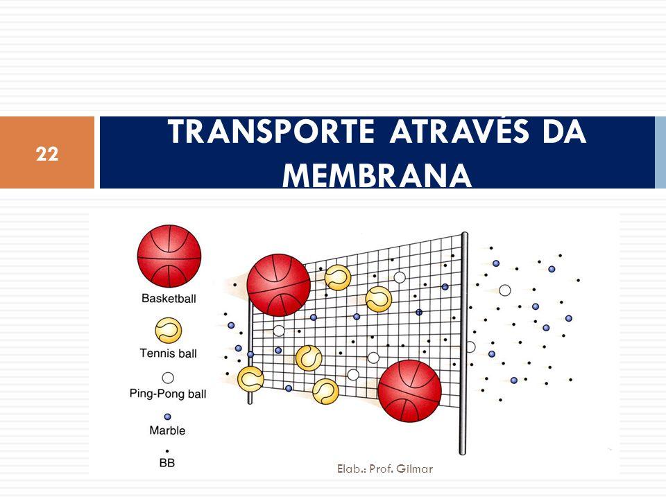 TRANSPORTE ATRAVÉS DA MEMBRANA 22 Elab.: Prof. Gilmar