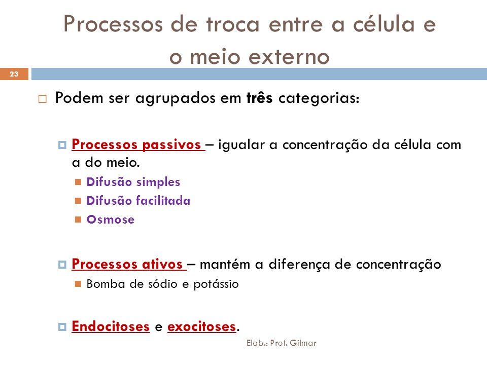 Processos de troca entre a célula e o meio externo Podem ser agrupados em três categorias: Processos passivos – igualar a concentração da célula com a