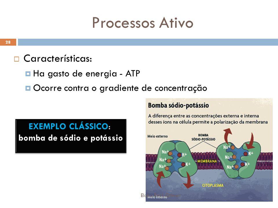 Processos Ativo Características: Ha gasto de energia - ATP Ocorre contra o gradiente de concentração 28 Elab.: Prof. Gilmar