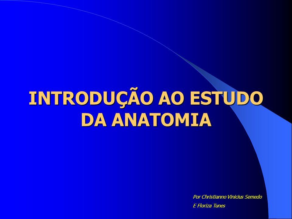 INTRODUÇÃO AO ESTUDO DA ANATOMIA Por Christianno Vinicius Semedo E Floriza Tunes