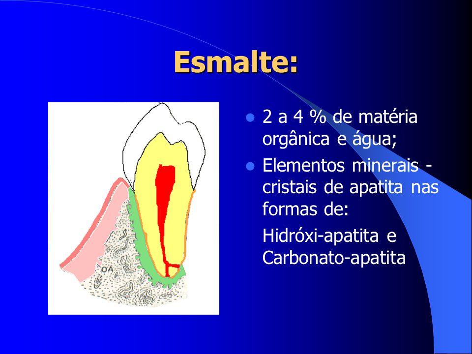 Esmalte: 2 a 4 % de matéria orgânica e água; Elementos minerais - cristais de apatita nas formas de: Hidróxi-apatita e Carbonato-apatita