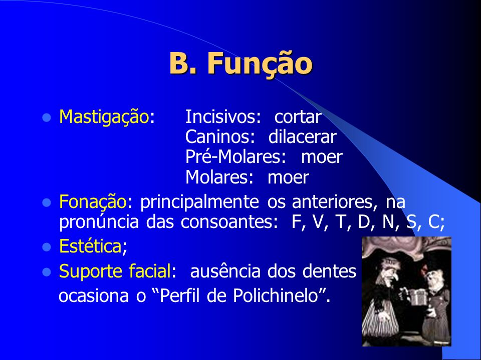 B. Função Mastigação:Incisivos: cortar Caninos: dilacerar Pré-Molares: moer Molares: moer Fonação: principalmente os anteriores, na pronúncia das cons