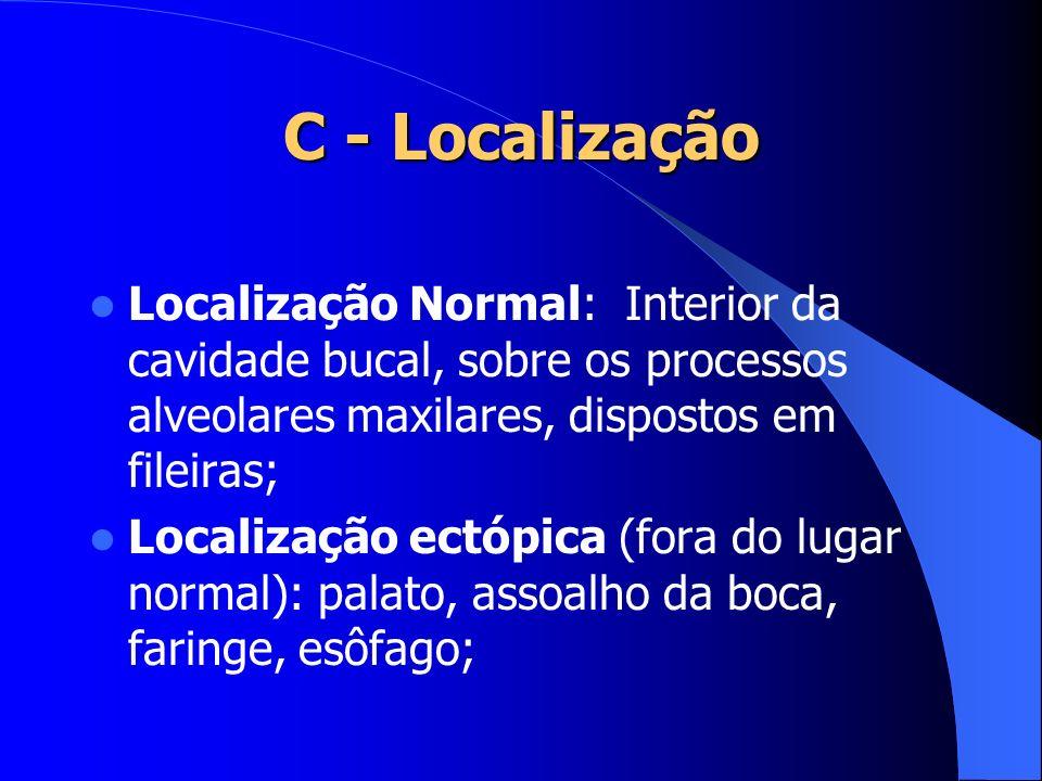 C - Localização Localização Normal: Interior da cavidade bucal, sobre os processos alveolares maxilares, dispostos em fileiras; Localização ectópica (