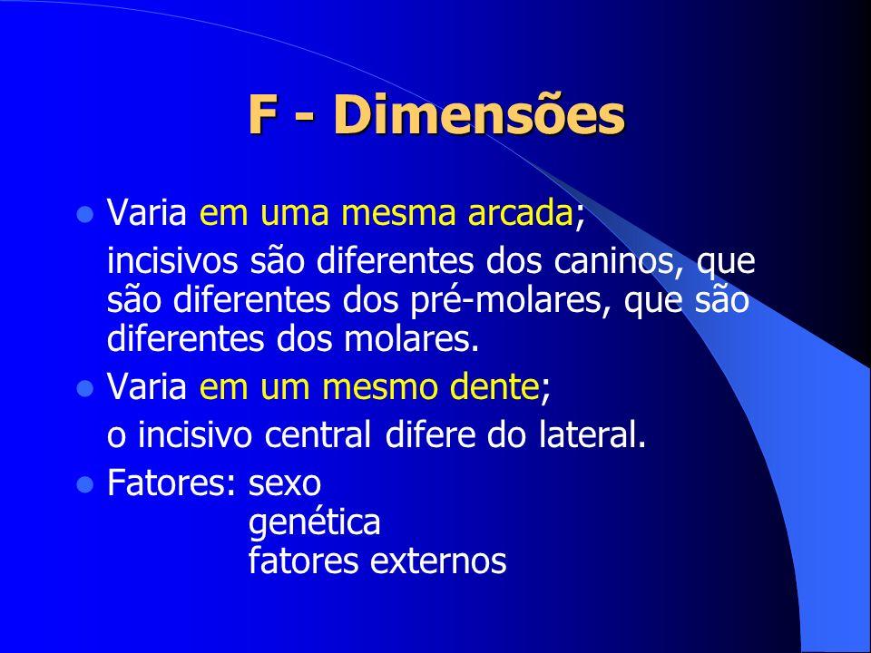 F - Dimensões Varia em uma mesma arcada; incisivos são diferentes dos caninos, que são diferentes dos pré-molares, que são diferentes dos molares. Var