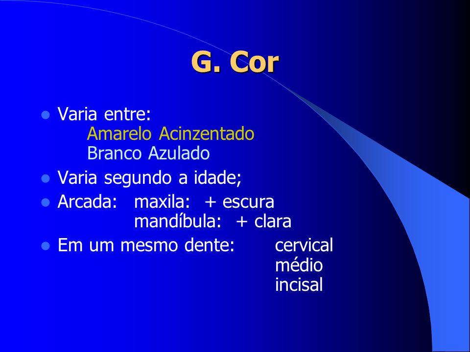 G. Cor Varia entre: Amarelo Acinzentado Branco Azulado Varia segundo a idade; Arcada:maxila: + escura mandíbula: + clara Em um mesmo dente:cervical mé