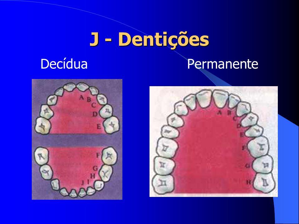 J - Dentições Decídua Permanente