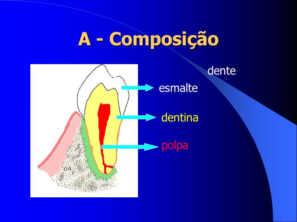A - Composição periodonto de sustentação cemento ligamento periodontal processo alveolar