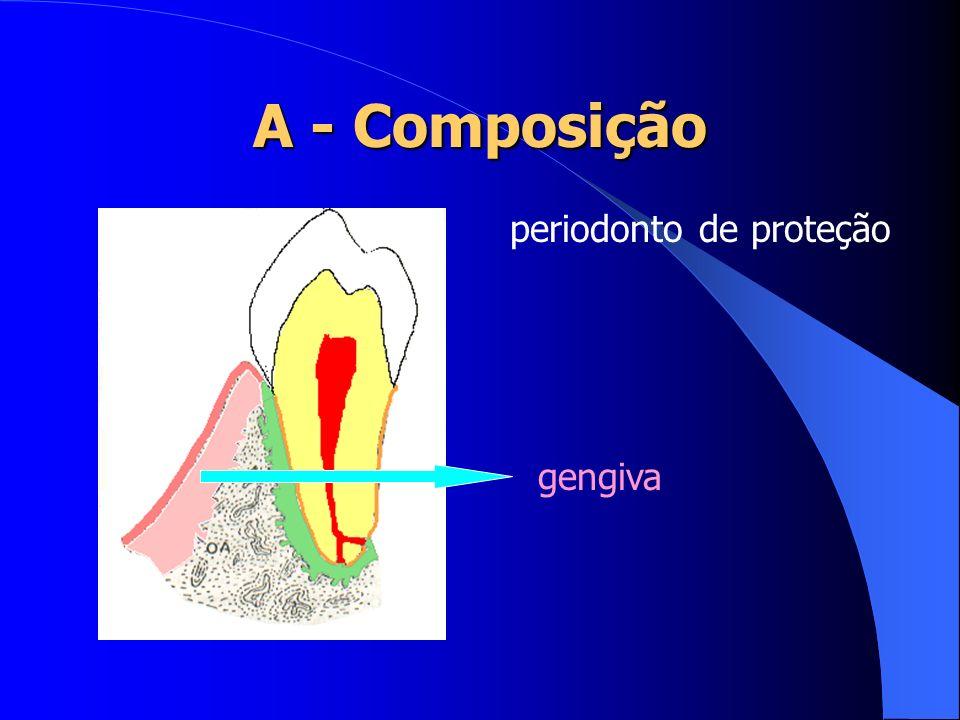 Esmalte: Estrutura mais dura e densamente mineralizada.