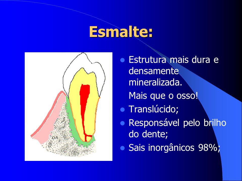 Esmalte: Estrutura mais dura e densamente mineralizada. Mais que o osso! Translúcido; Responsável pelo brilho do dente; Sais inorgânicos 98%;