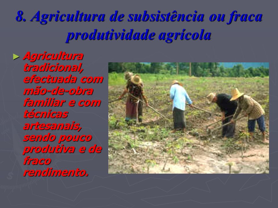 8. Agricultura de subsistência ou fraca produtividade agrícola Agricultura tradicional, efectuada com mão-de-obra familiar e com técnicas artesanais,