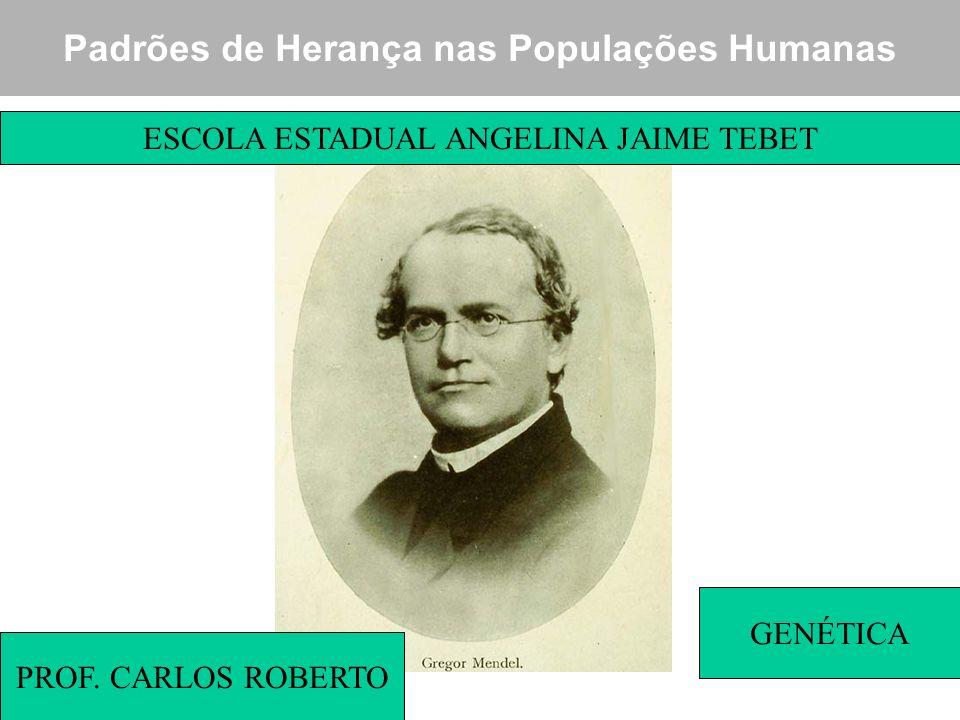 Padrões de Herança nas Populações Humanas PROF. CARLOS ROBERTO ESCOLA ESTADUAL ANGELINA JAIME TEBET GENÉTICA