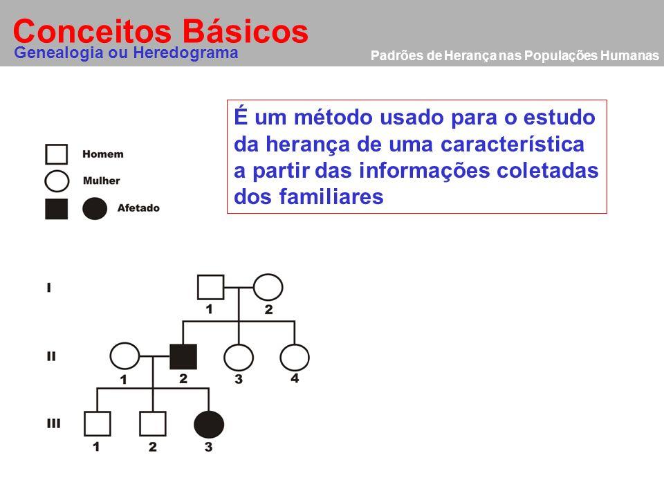 Conceitos Básicos Genealogia ou Heredograma É um método usado para o estudo da herança de uma característica a partir das informações coletadas dos fa