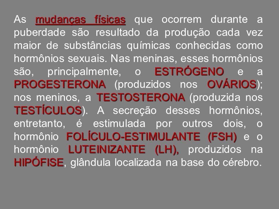 mudanças físicas ESTRÓGENO PROGESTERONAOVÁRIOS TESTOSTERONA TESTÍCULOS FOLÍCULO-ESTIMULANTE (FSH) LUTEINIZANTE (LH), HIPÓFISE As mudanças físicas que