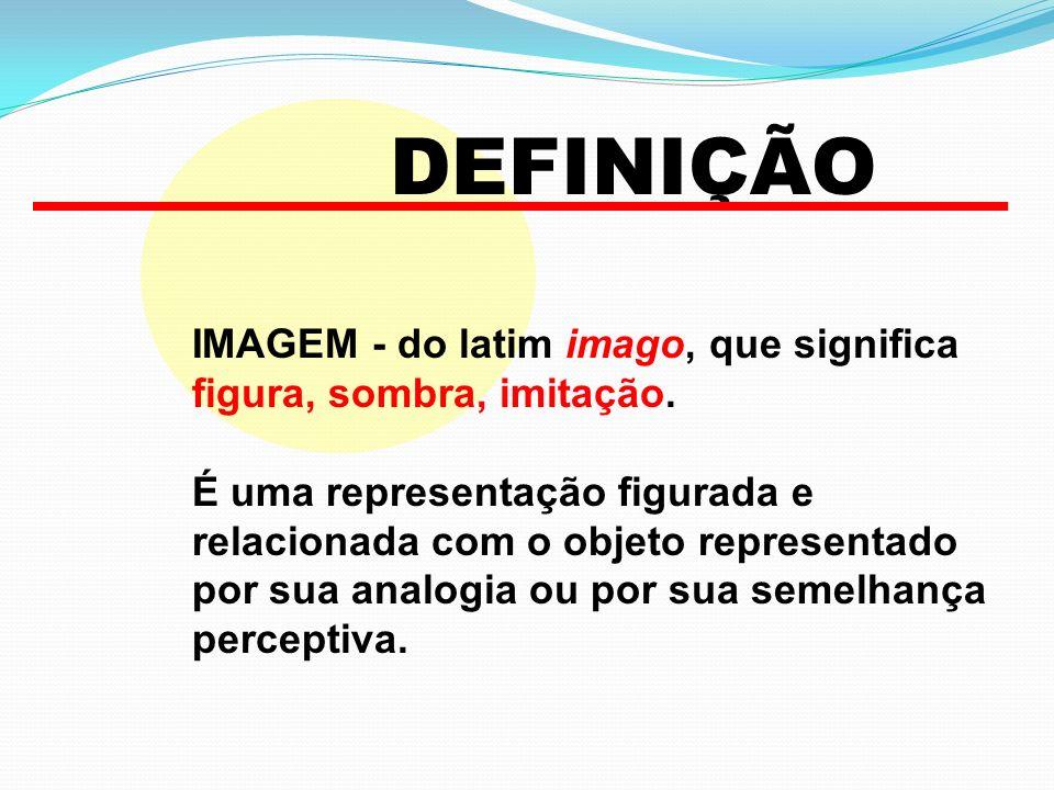 IMAGEM - do latim imago, que significa figura, sombra, imitação. É uma representação figurada e relacionada com o objeto representado por sua analogia
