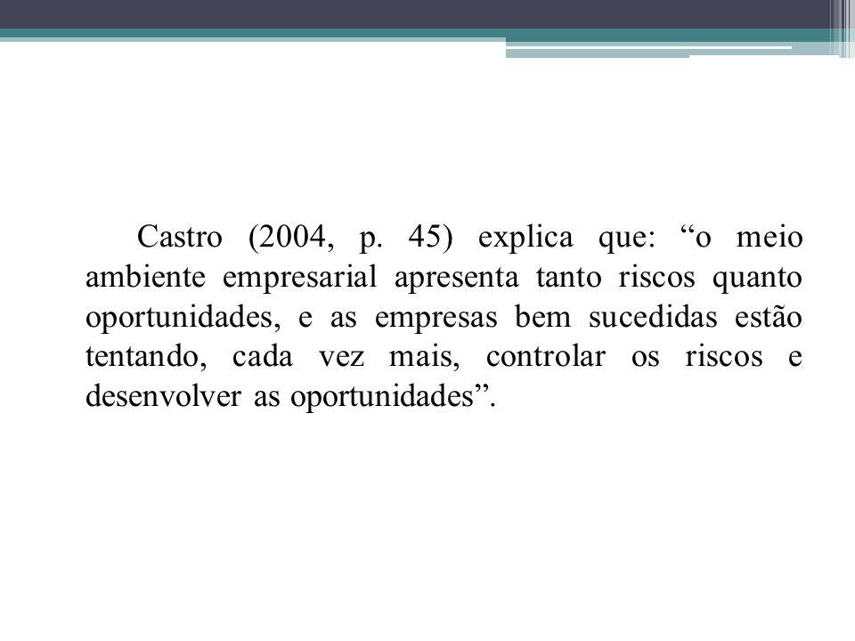 Castro (2004, p. 45) explica que: o meio ambiente empresarial apresenta tanto riscos quanto oportunidades, e as empresas bem sucedidas estão tentando,