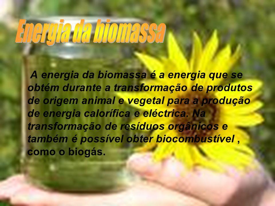 A energia da biomassa é a energia que se obtém durante a transformação de produtos de origem animal e vegetal para a produção de energia calorífica e