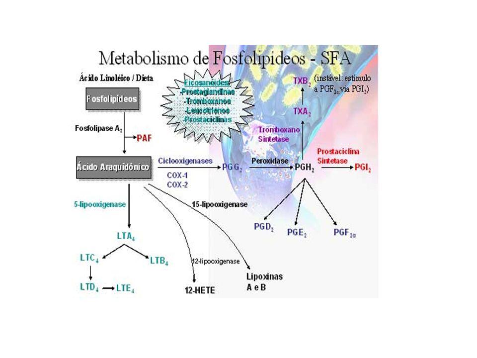 COX-1 é uma enzima constitutiva expressa na maioria dos tecidos, envolvida na homeostasia tecidual.