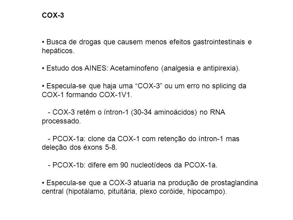 COX-3 Busca de drogas que causem menos efeitos gastrointestinais e hepáticos. Estudo dos AINES: Acetaminofeno (analgesia e antipirexia). Especula-se q
