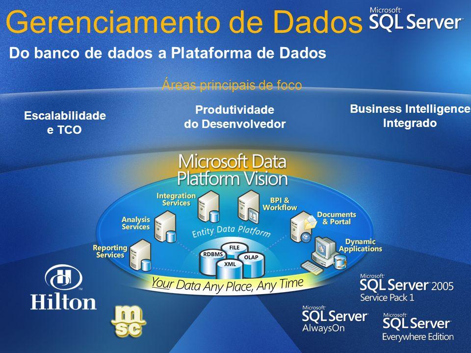 Gerenciamento de Dados Do banco de dados a Plataforma de Dados Escalabilidade e TCO Produtividade do Desenvolvedor Business Intelligence Integrado Áre