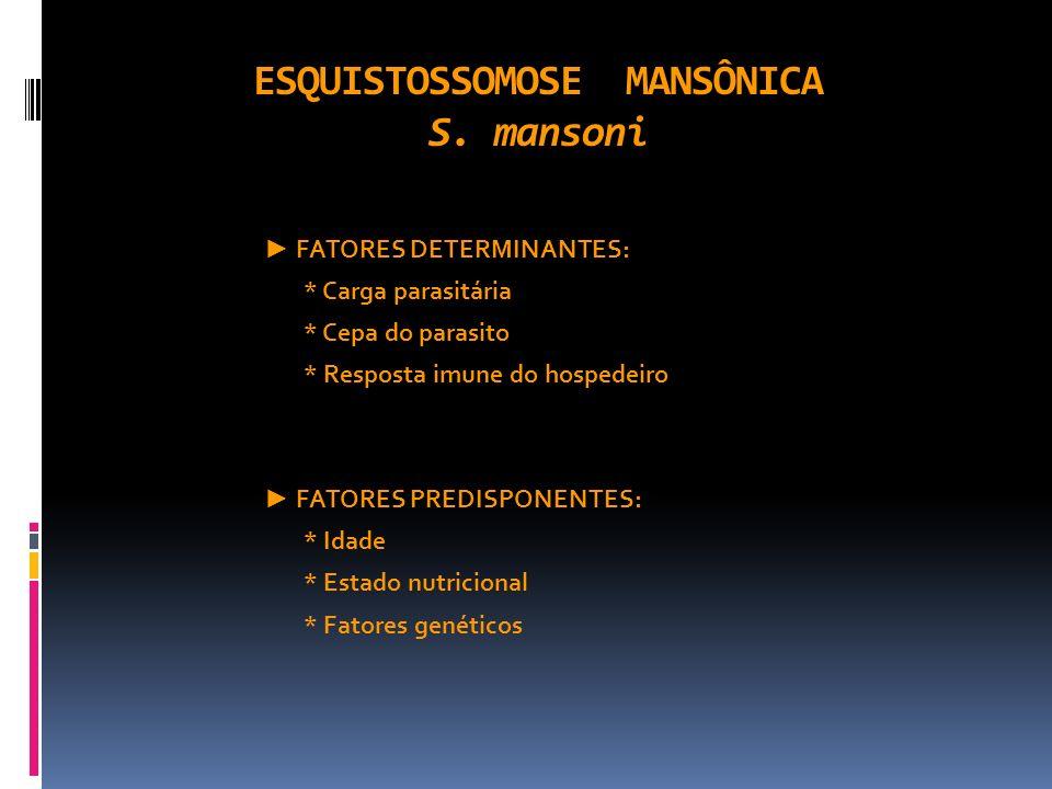 ESQUISTOSSOMOSE MANSÔNICA S. mansoni FATORES DETERMINANTES: * Carga parasitária * Cepa do parasito * Resposta imune do hospedeiro FATORES PREDISPONENT