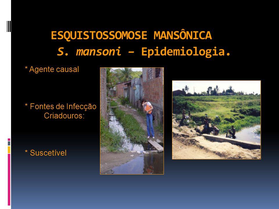 ESQUISTOSSOMOSE MANSÔNICA S. mansoni – Epidemiologia. * Agente causal * Fontes de Infecção Criadouros: * Suscetível