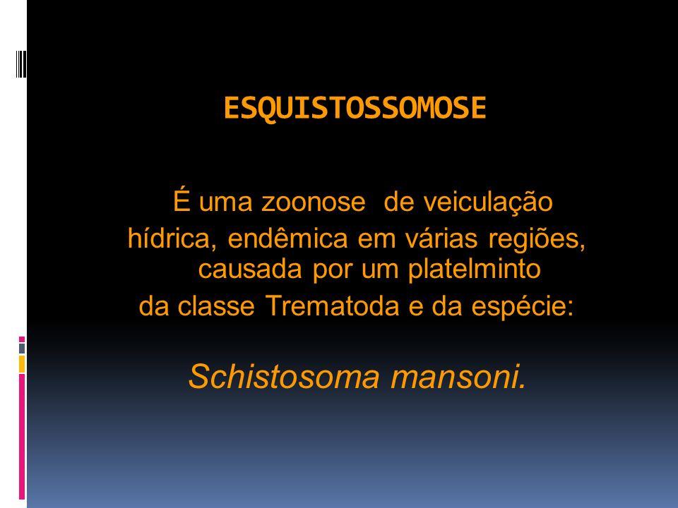 ESQUISTOSSOMOSE É uma zoonose de veiculação hídrica, endêmica em várias regiões, causada por um platelminto da classe Trematoda e da espécie: Schistos