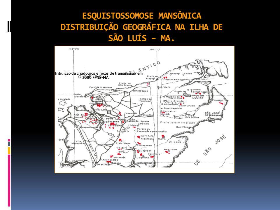 ESQUISTOSSOMOSE MANSÔNICA DISTRIBUIÇÃO GEOGRÁFICA NA ILHA DE SÃO LUÍS – MA. Distribuição de criadouros e focos de transmissão em 2000 /FNS-MA.
