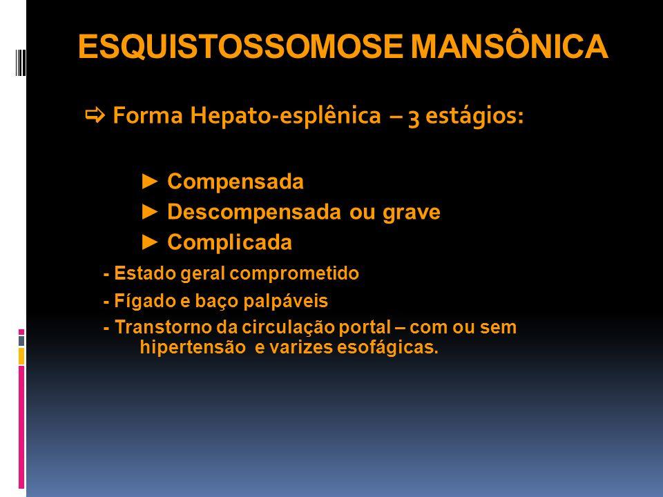 ESQUISTOSSOMOSE MANSÔNICA Forma Hepato-esplênica – 3 estágios: Compensada Descompensada ou grave Complicada - Estado geral comprometido - Fígado e baç