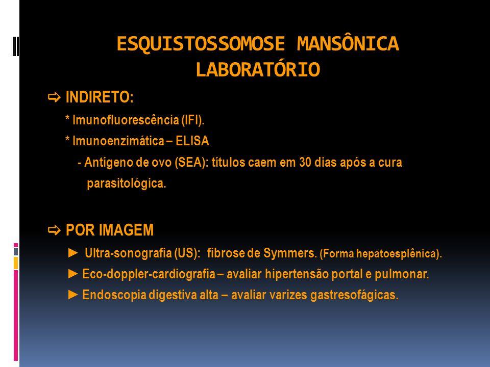ESQUISTOSSOMOSE MANSÔNICA LABORATÓRIO INDIRETO: * Imunofluorescência (IFI). * Imunoenzimática – ELISA - Antígeno de ovo (SEA): títulos caem em 30 dias
