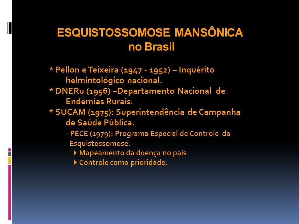 ESQUISTOSSOMOSE MANSÔNICA no Brasil * Pellon e Teixeira (1947 - 1952) – Inquérito helmintológico nacional. * DNERu (1956) –Departamento Nacional de En