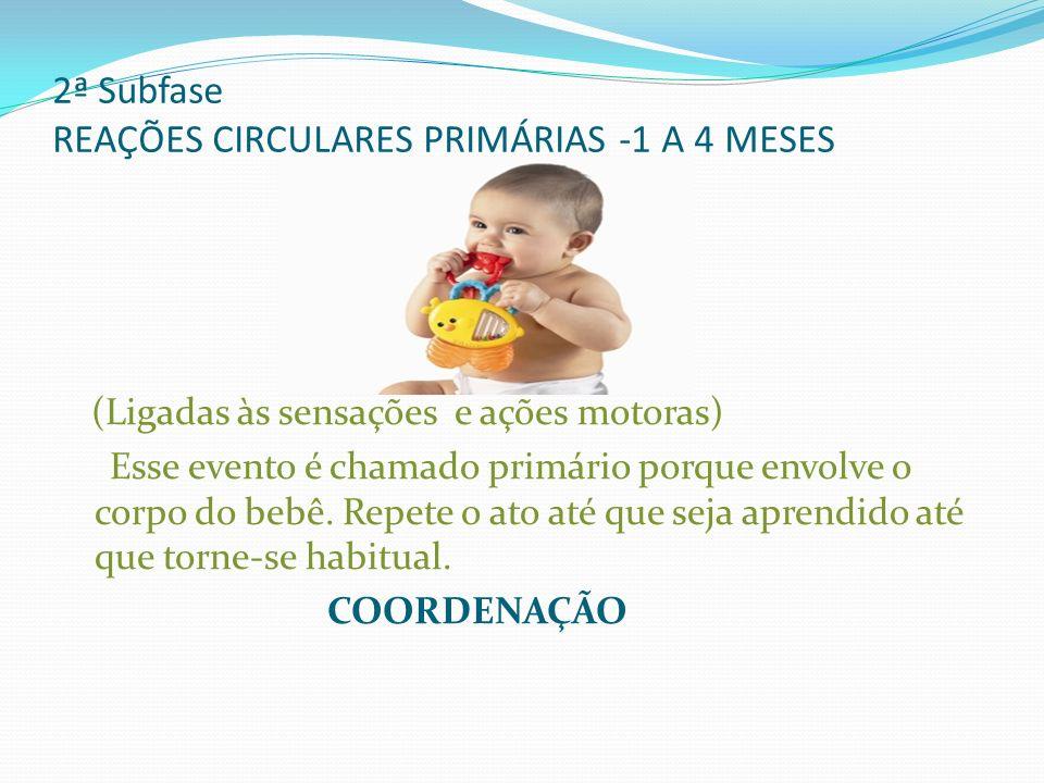 2ª Subfase REAÇÕES CIRCULARES PRIMÁRIAS -1 A 4 MESES (Ligadas às sensações e ações motoras) Esse evento é chamado primário porque envolve o corpo do b