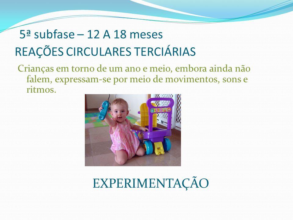 5ª subfase – 12 A 18 meses REAÇÕES CIRCULARES TERCIÁRIAS Crianças em torno de um ano e meio, embora ainda não falem, expressam-se por meio de moviment