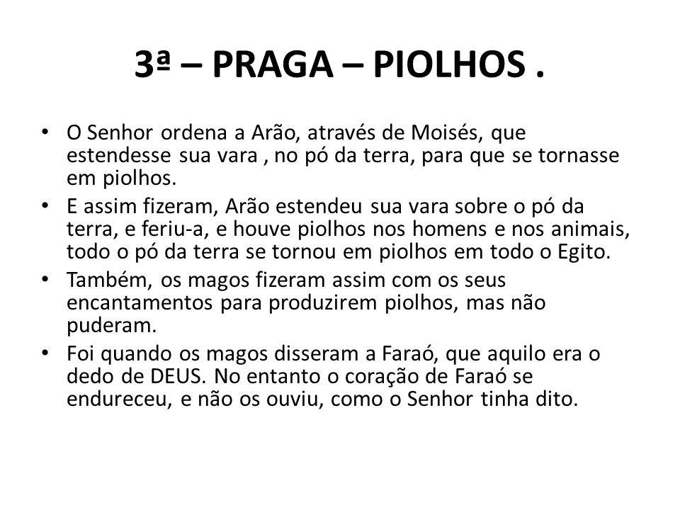 3ª – PRAGA – PIOLHOS. O Senhor ordena a Arão, através de Moisés, que estendesse sua vara, no pó da terra, para que se tornasse em piolhos. E assim fiz