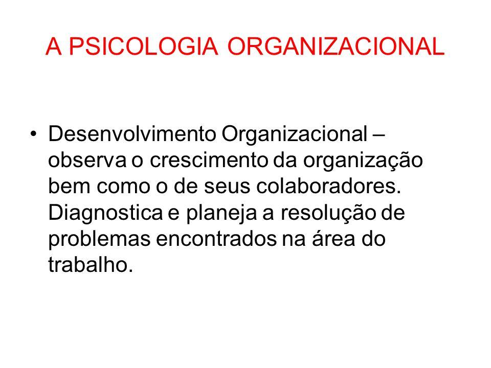 A PSICOLOGIA ORGANIZACIONAL Desenvolvimento Organizacional – observa o crescimento da organização bem como o de seus colaboradores. Diagnostica e plan