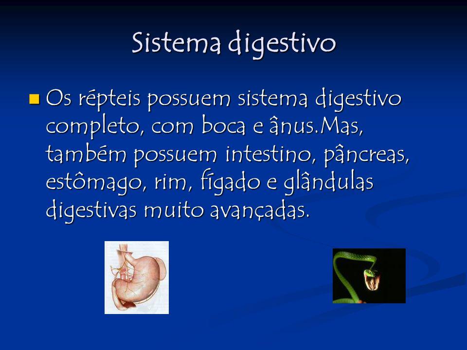 Sistema Circulatório Todos possuem sistema circulatório fechado.Nos quelônios, escamados e rincocéfalos há uma circulação dupla e incompleta, misturando o sangue venoso com o arterial.Somente não acontece essa mistura com os crocodilianos.