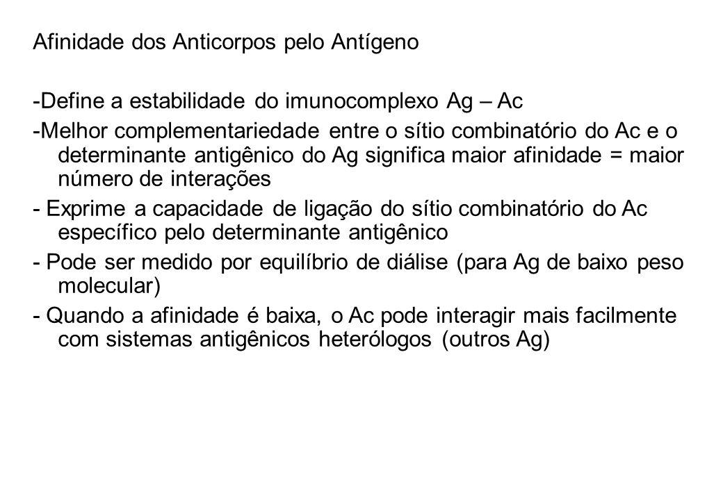 Afinidade dos Anticorpos pelo Antígeno -Define a estabilidade do imunocomplexo Ag – Ac -Melhor complementariedade entre o sítio combinatório do Ac e o