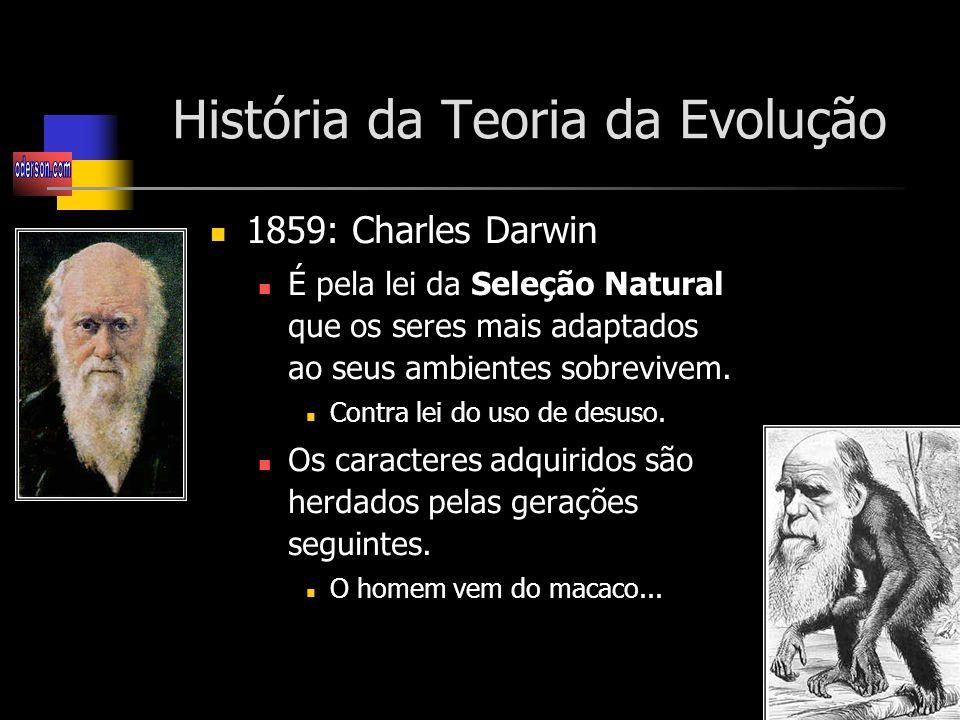 História da Teoria da Evolução 1859: Charles Darwin É pela lei da Seleção Natural que os seres mais adaptados ao seus ambientes sobrevivem.