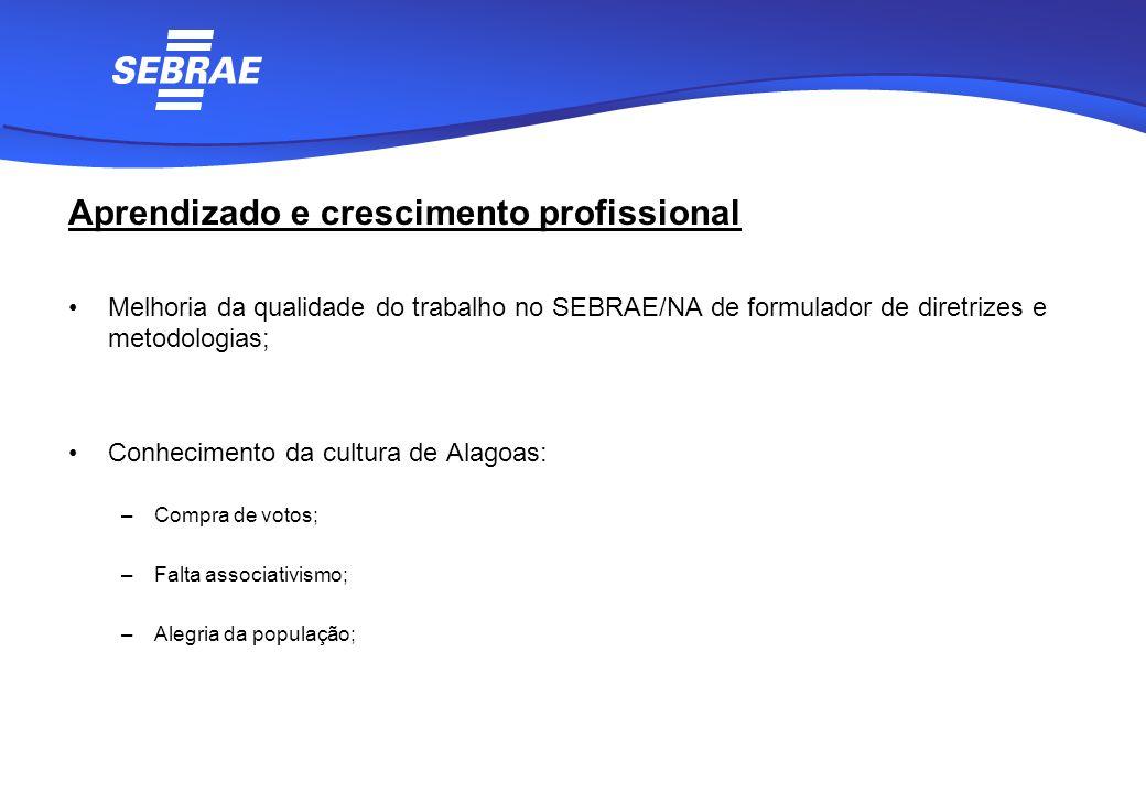 Aprendizado e crescimento profissional Melhoria da qualidade do trabalho no SEBRAE/NA de formulador de diretrizes e metodologias; Conhecimento da cult