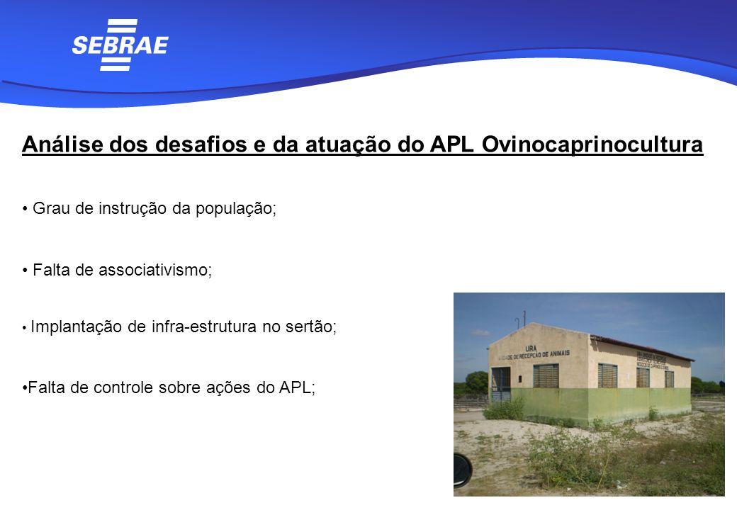 Análise dos desafios e da atuação do APL Ovinocaprinocultura Grau de instrução da população; Falta de associativismo; Implantação de infra-estrutura n