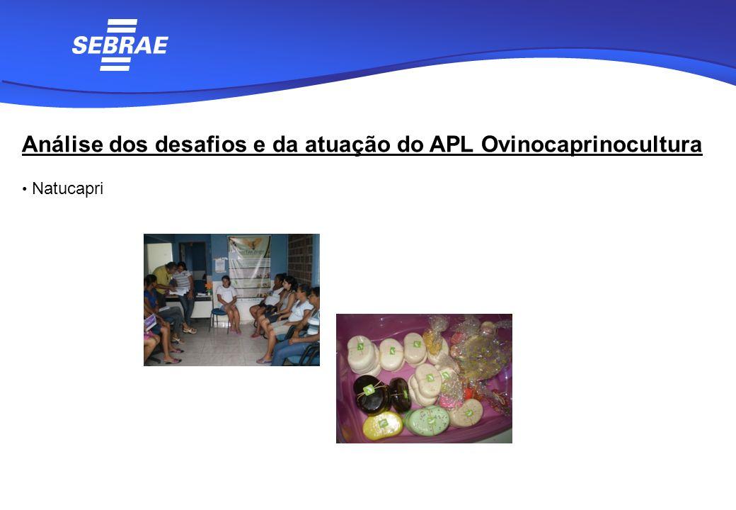 Análise dos desafios e da atuação do APL Ovinocaprinocultura Natucapri